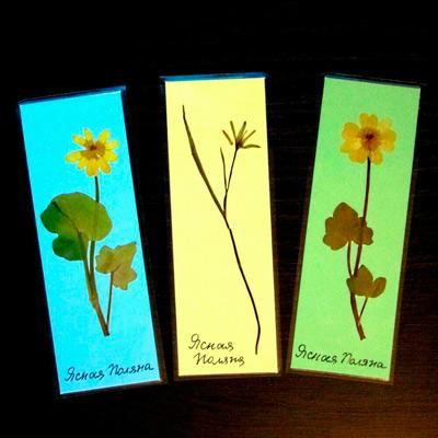 Поделки своими руками к празднику 8 марта: картины из цветов