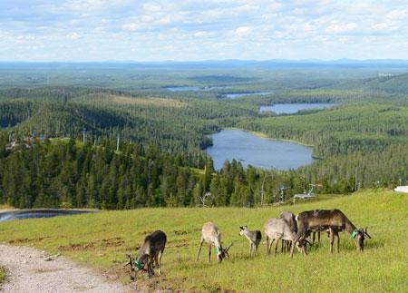 Дети и подростки в Финляндии: почему им легко учиться