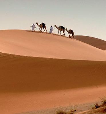 Караваны верблюдов чаще всего используются для развлечения турист