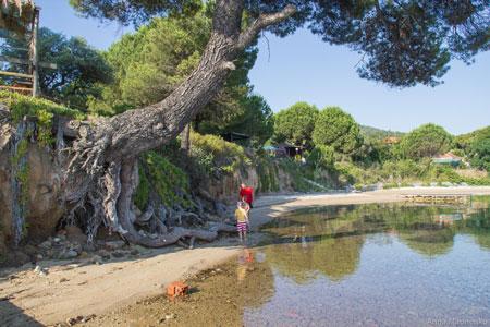 Отдых с детьми: Греция 2015. Почему мы выбрали Ситонию
