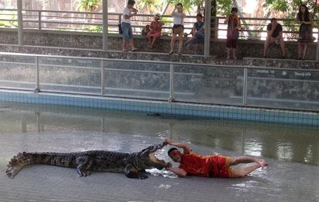 Дрессировщик крокодилов