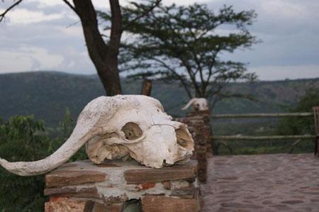Кения, Масаи