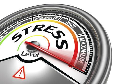 Почему тело и мозг человека не приспособлены к хроническому стрессу
