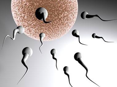 Посткоитальные контрацептивы