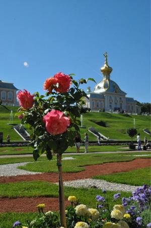 Экскурсии Санкт-Петербурга