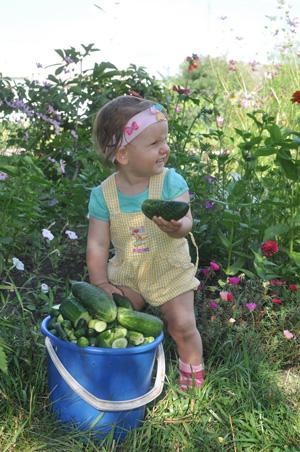Лето в деревне: отдых с детьми в Черноземье