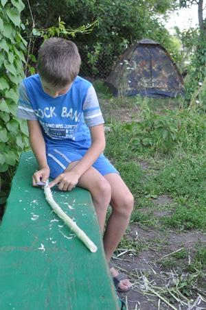 Рассказы подростки деревня лето