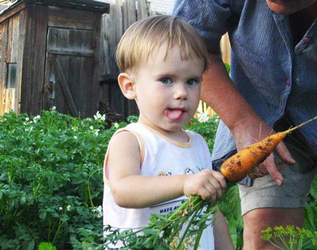 Летом на даче - урожай