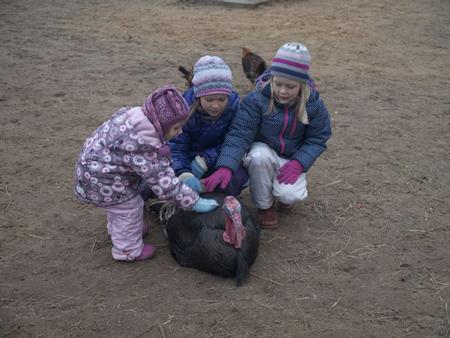 Отдых с детьми: экскурсия в Мышкин и Мартыново