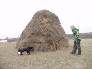 С детьми в Переславль-Залесский
