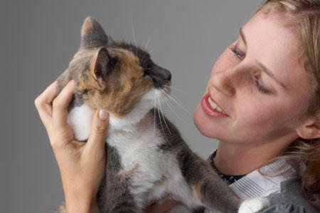 Почему кошка метит