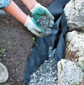 Выращивание в открытом грунте