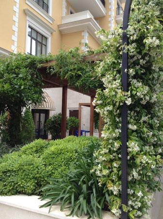 Курорт Regent Porto Montenegro