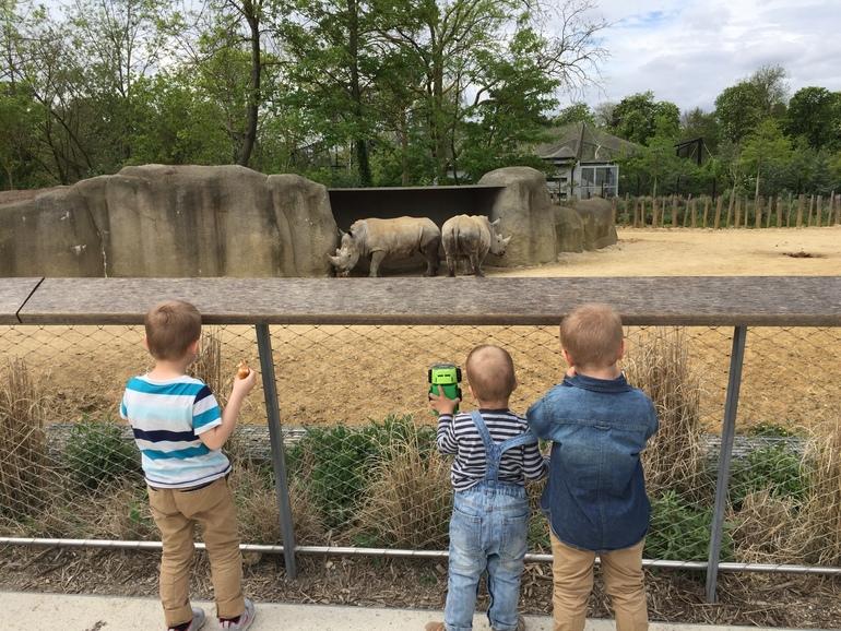 Зоопарк в Париже