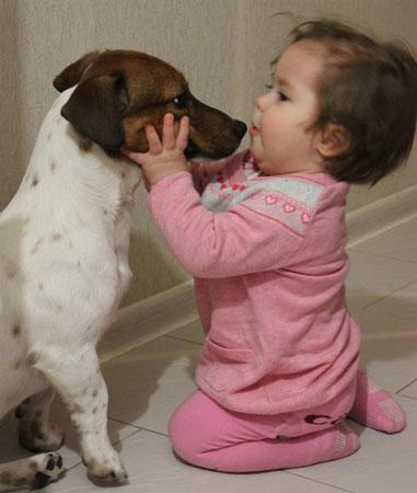 Рождение ребенка и дружба с собакой