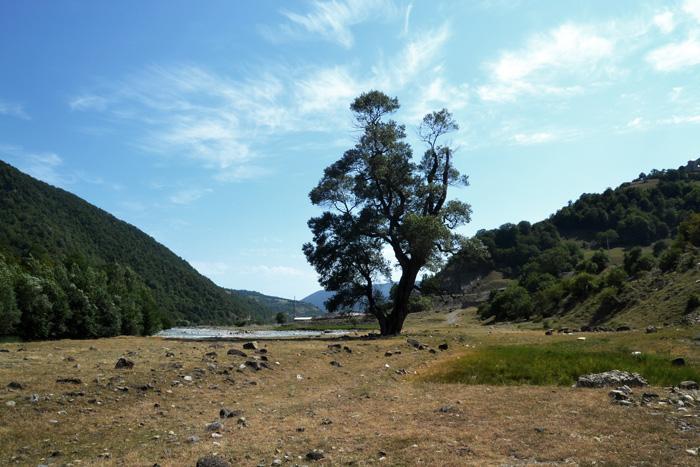 Свадебное путешествие в Грузию