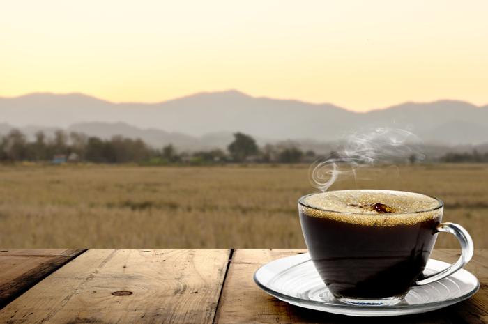 Похудеть с зеленым кофе