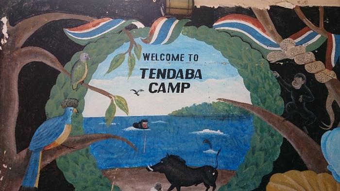 Наблюдение за птицами в Tendaba Camp
