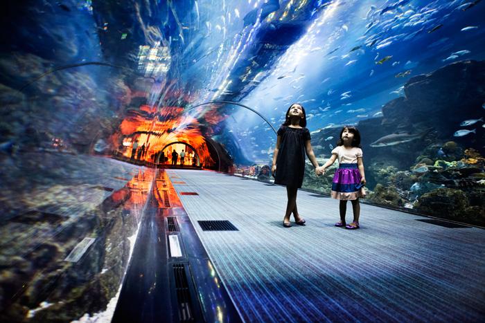 Дубай аквариум
