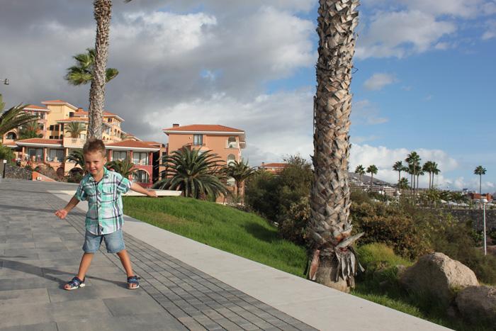 Зимовка на Тенерифе: с ноября по март. Отдых на Тенерифе с ребенком. Канарские острова отдых с детьми