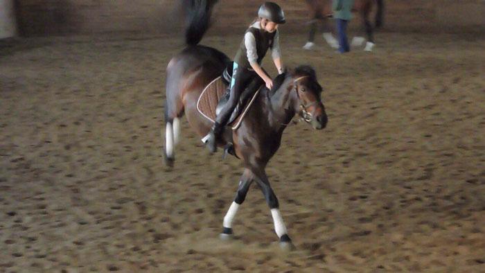 Девочка и конный спорт