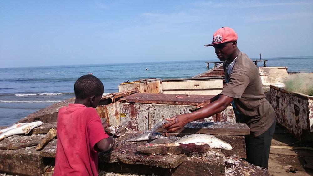 Рыбацкая деревня и рыбный рынок