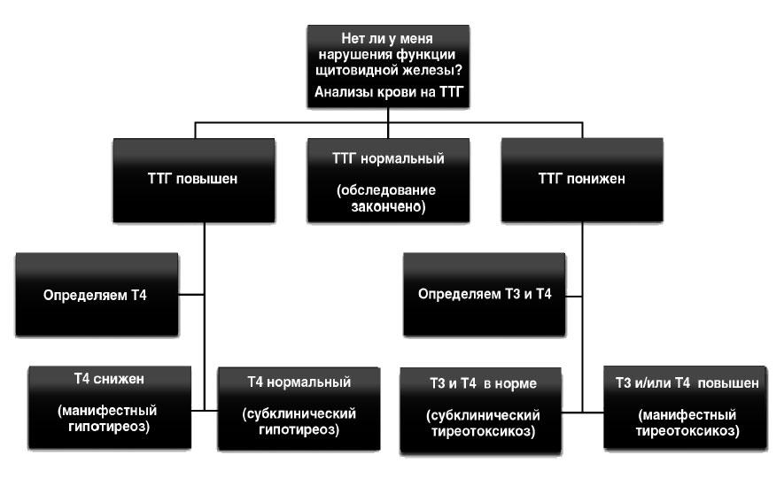 Анализы на гормоны: ТТГ, Т4, АТ к ТПО