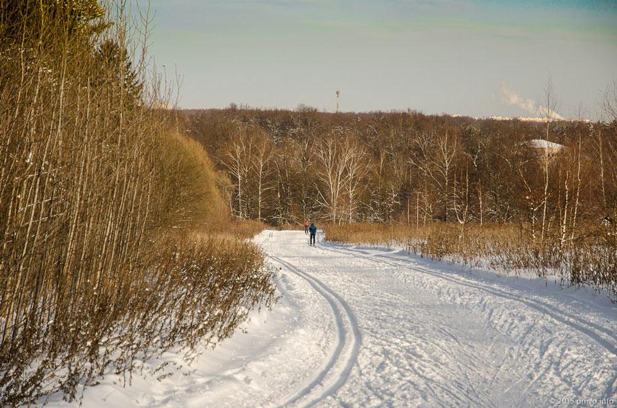 Лыжная трасса в Битцевском лесу