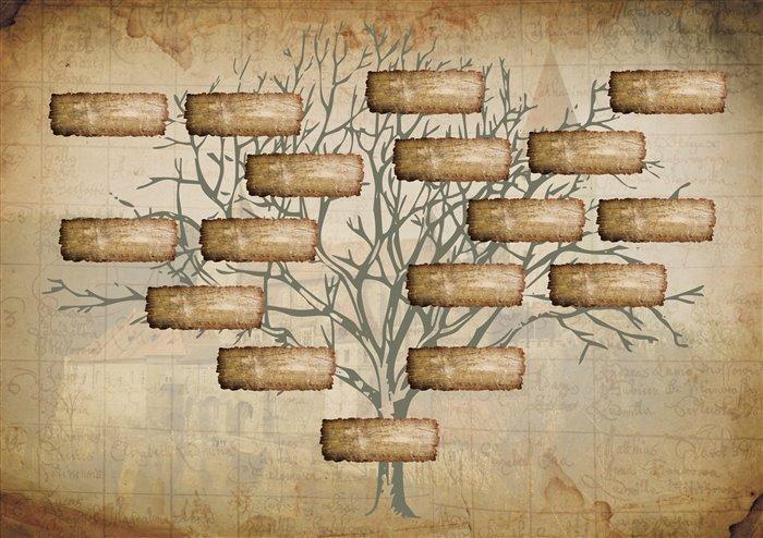 Как правильно оформить родовое древо
