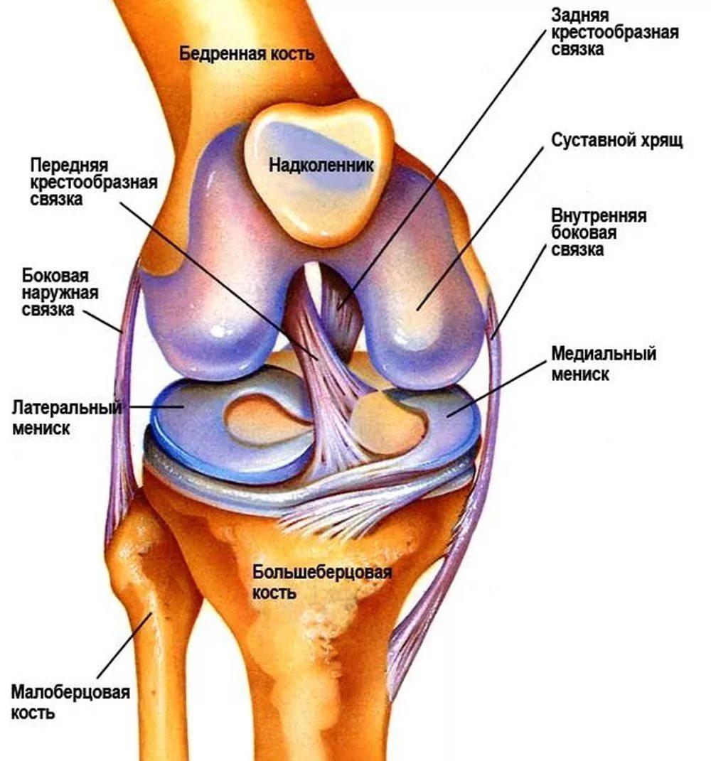 Хруст в суставах, ногах, руках без боли артроз плечевого сустава больница им вредена