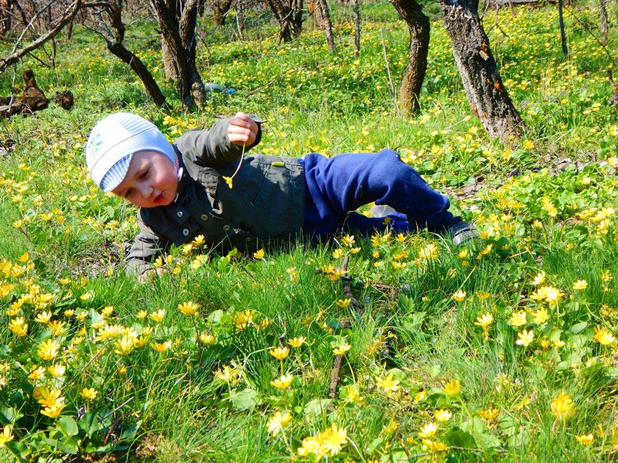Игры с ребенком на природе