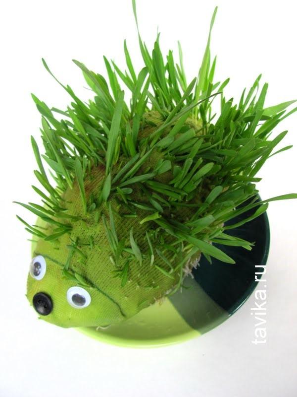 Травяной ежик