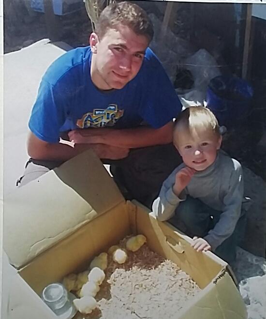 Купили цыплят