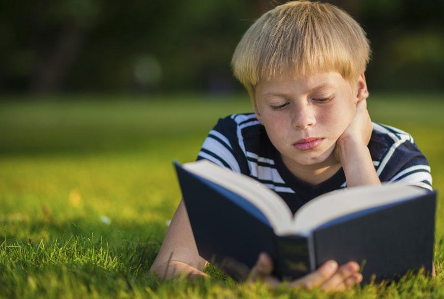 Школьная программа политературе