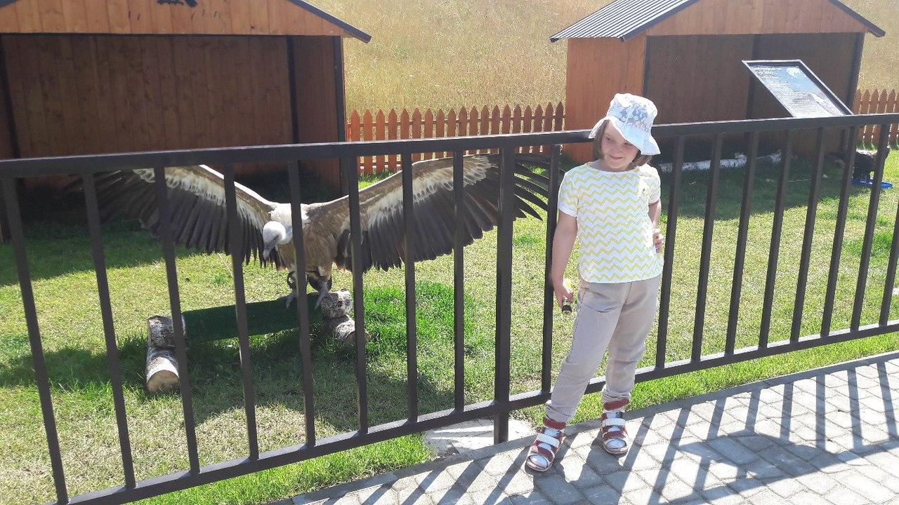 Новый зоопарк в Калуге