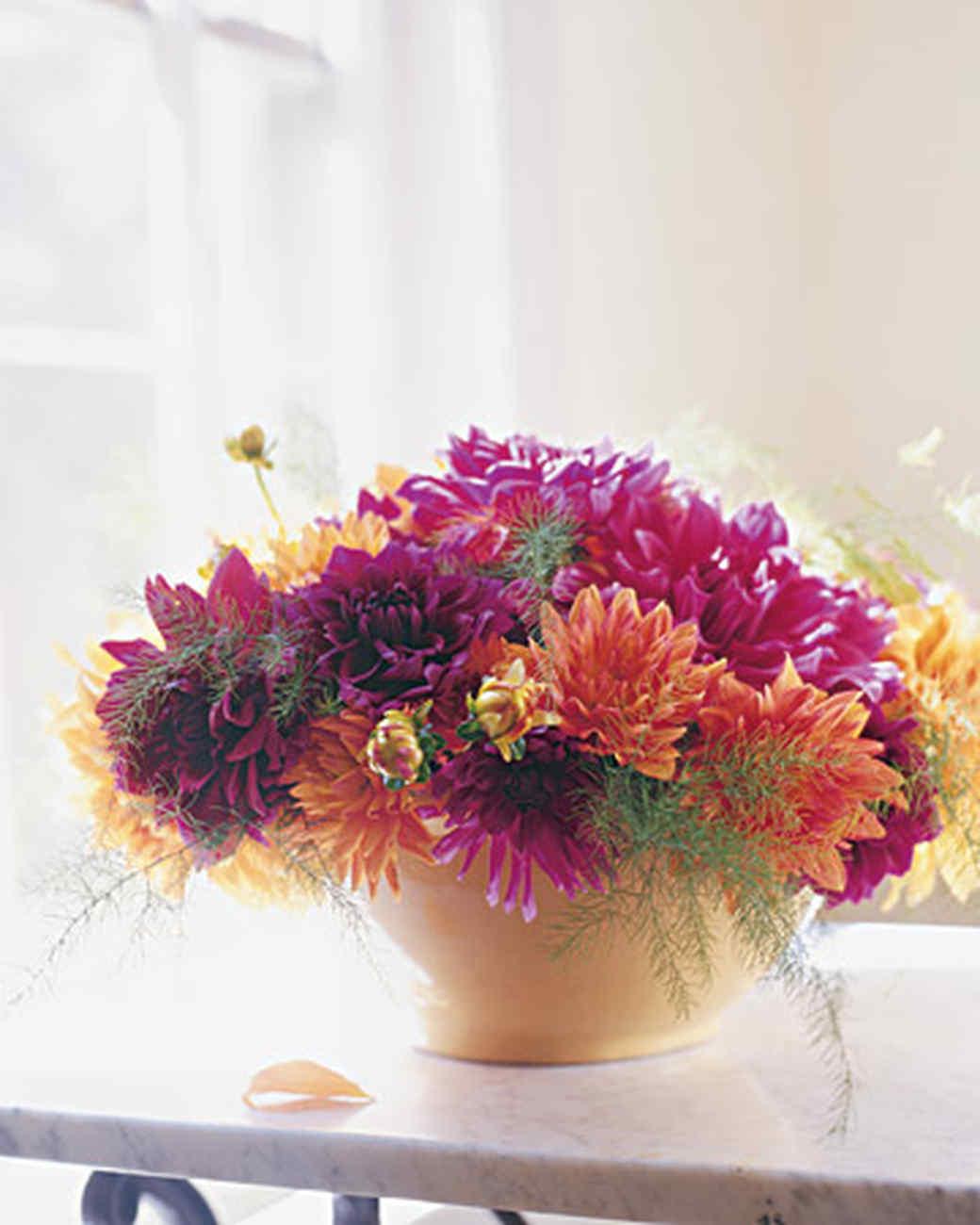 Все тенелюбивые цветы фото
