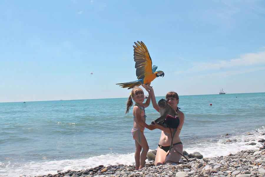 Отдых с ребенком в Сочи