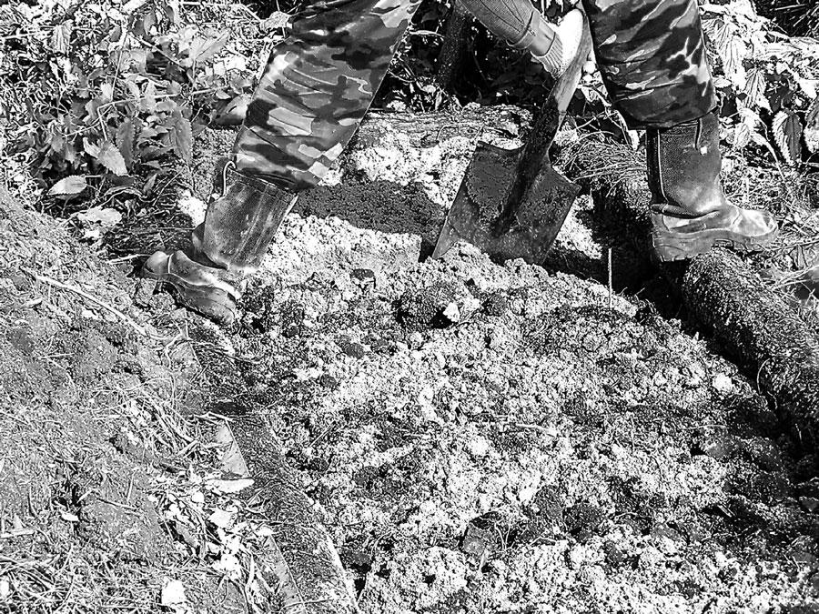 Как изменить состав почвы