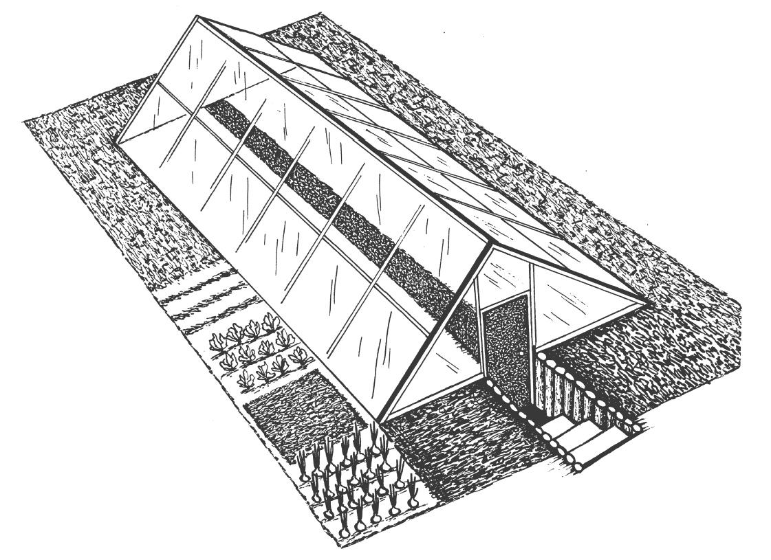 Овощной комплекс изоткрытого изакрытого грунта