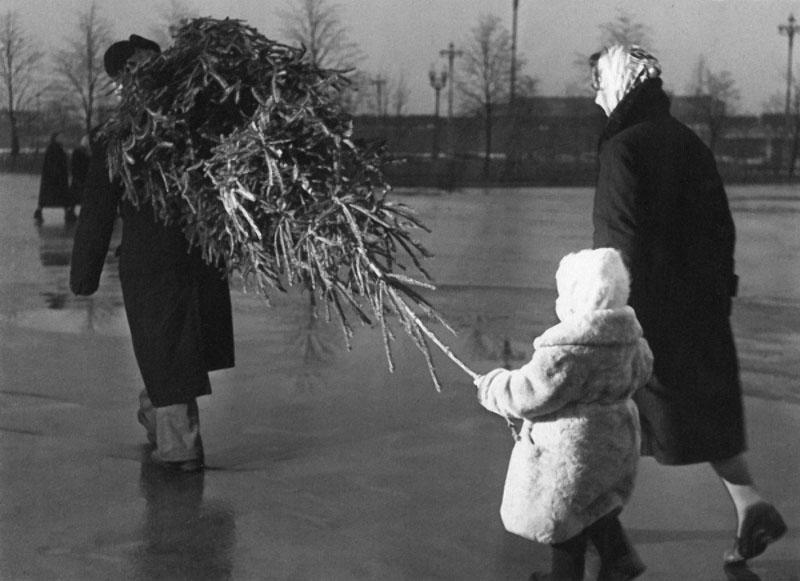 Ёлка. Автор Рахманов Николай, 1950-е