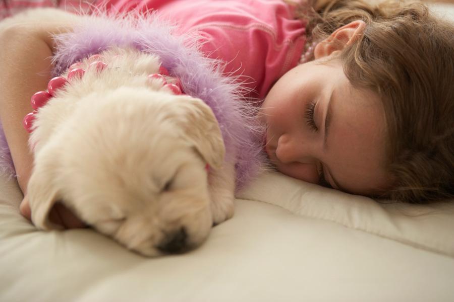 Самодельная книжка обукладывании спать