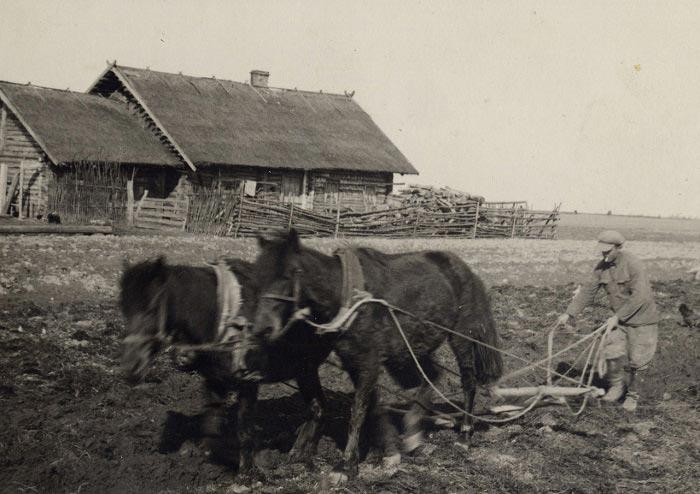Деревня, 1936г.