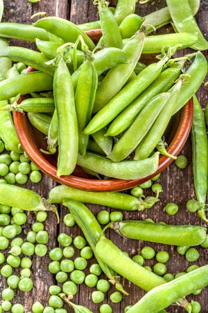 Овощи для детей на даче: что посадить? 7 идей. Овощи на даче. Грядки для детей в 2019 году