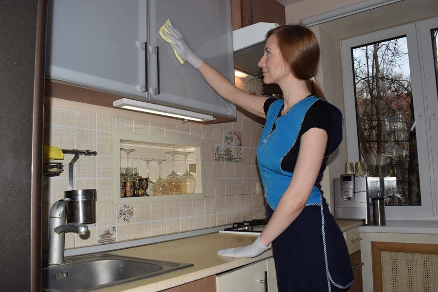 Моющие средства иинвентарь для легкой уборки