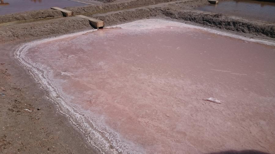Добыча соли, Испания