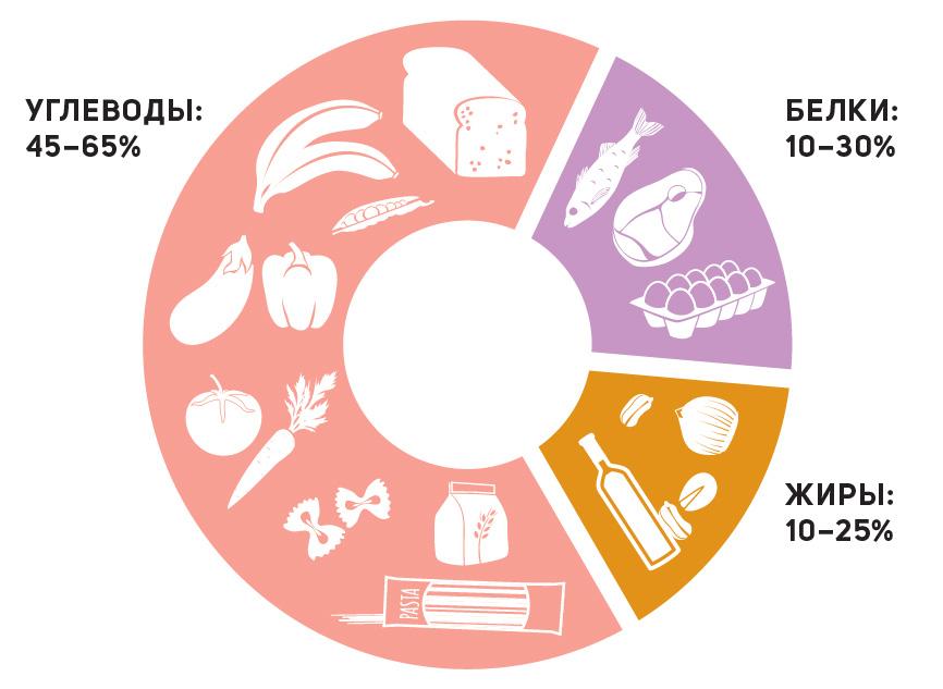 Рекомендации ВОЗ побалансу макронутриентов втечение дня