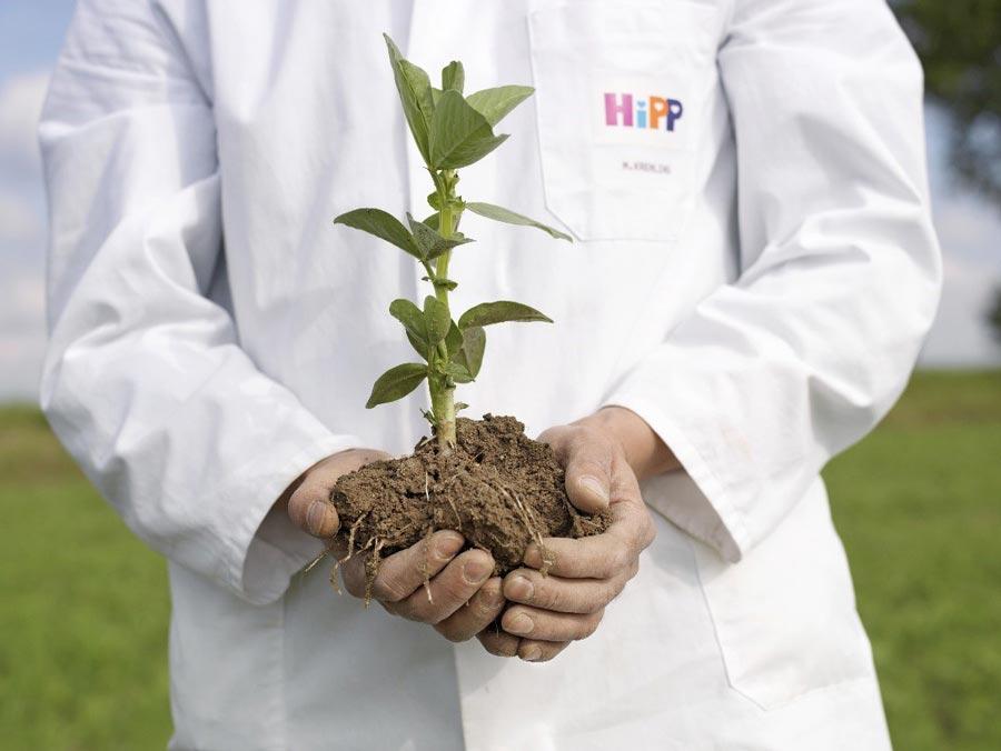 Лучшее отприроды, лучшее для природы: органическое детское питание HiPP