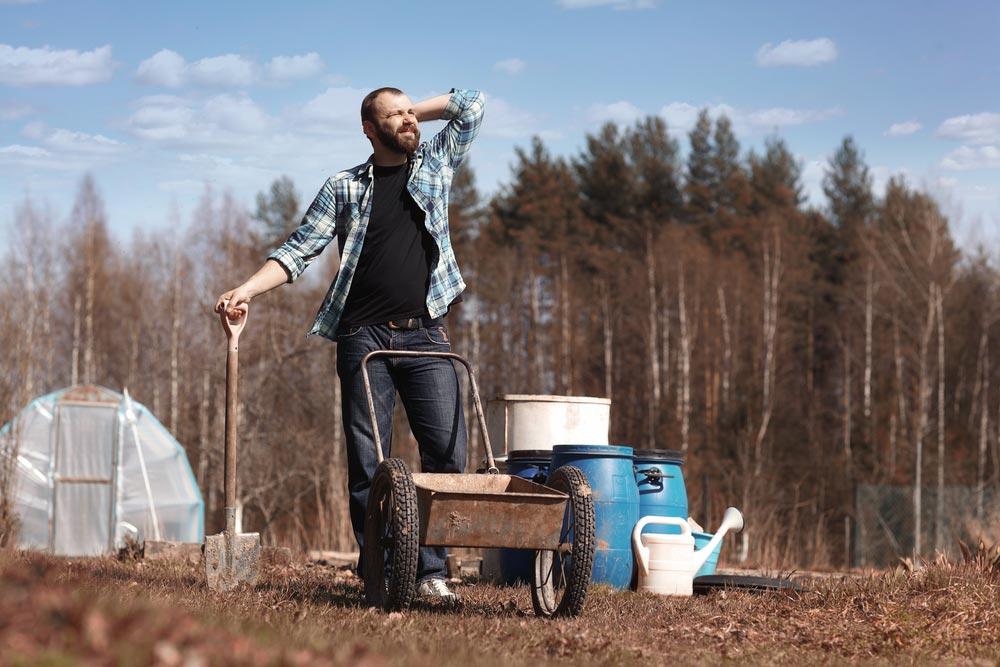 Как улучшить почву на даче