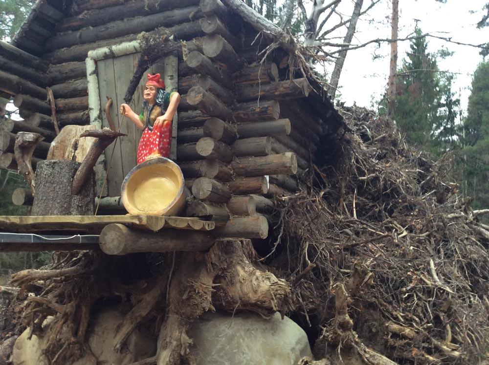 Пням после очистки леса нашли отличное применение