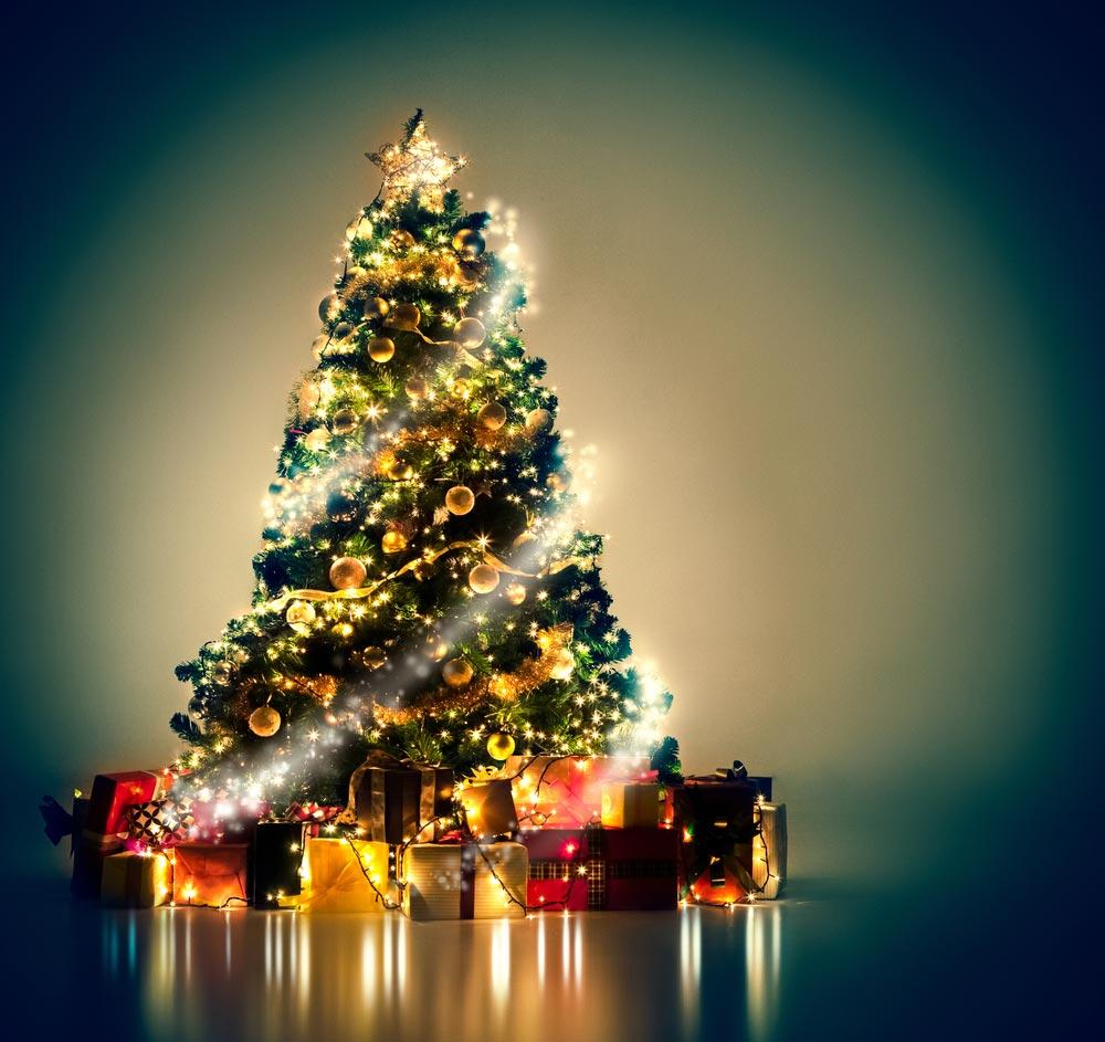 Рождественская ночь в деревне